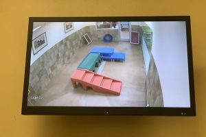Video Spot Monitors 1